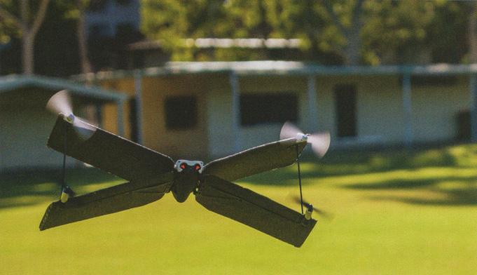 Parrot swing drone sale