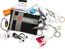 Bush survival kit